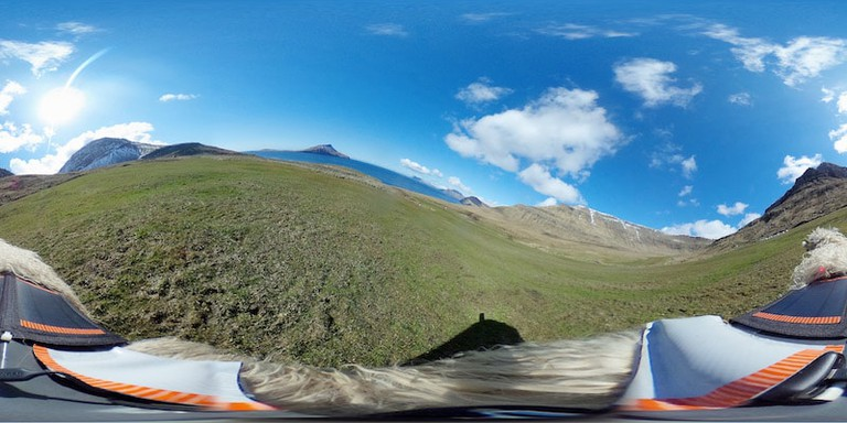 A view from one of the 360-degree cameras attached to a sheep