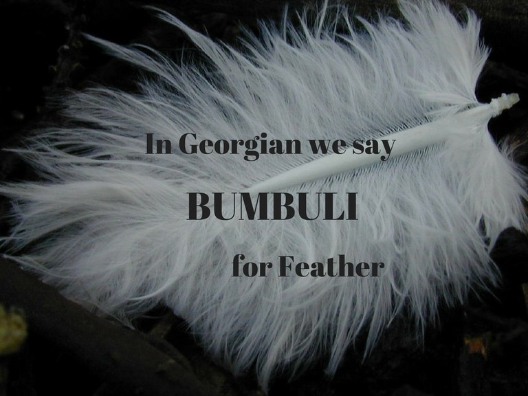 Bumbuli – Feather