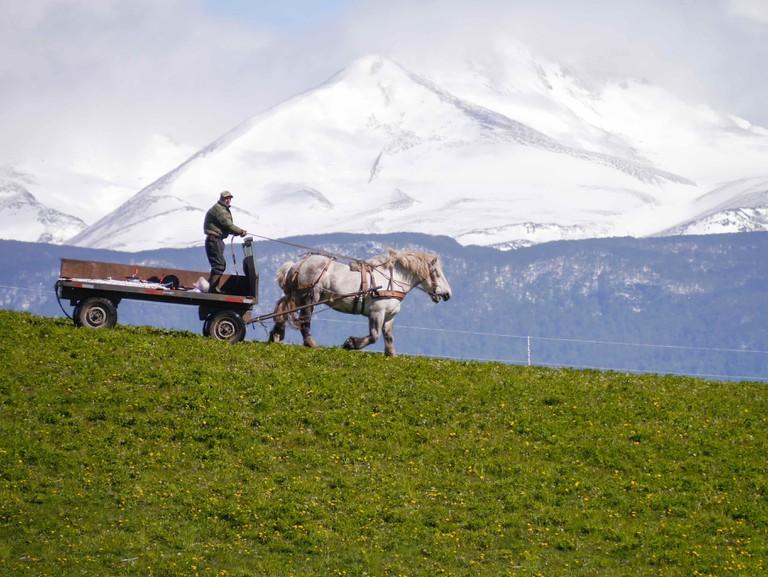 Carretera_Austral,_Chile_(10868355224)