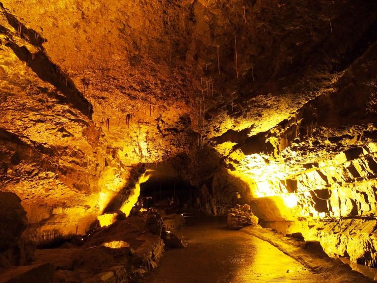 Dan-yr-Ogof Caves