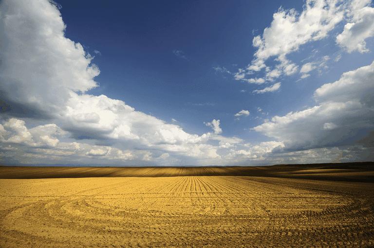 Deliblatska_peščara