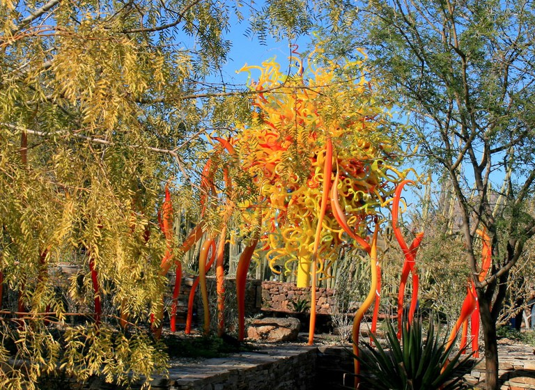 Chihuly exhibit at Desert Botanical Gardens   © Paula Henry / Flickr