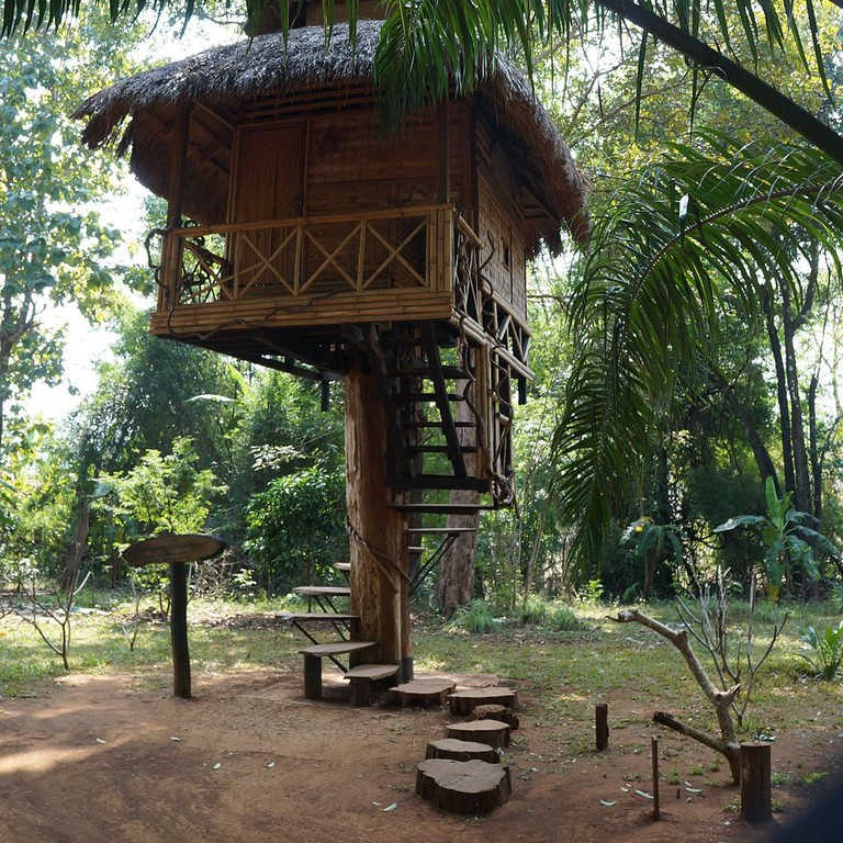 Dong_Hua_Sao_National_Bio-Diversity_Conservation_Area,_Don,_Laos