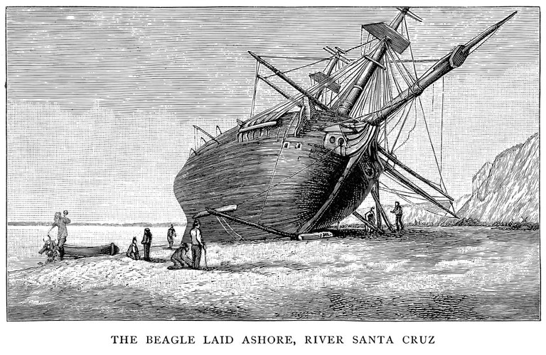 The Beagle ship, which Darwin traveled in and after which the Beagle Channel was named