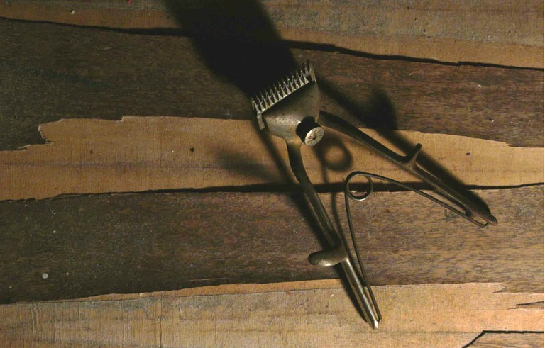 Nikola Bizumić revolutionised the haircutting industry