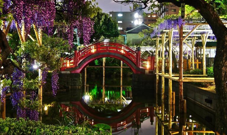 Kameido_Tenjin_Shrine