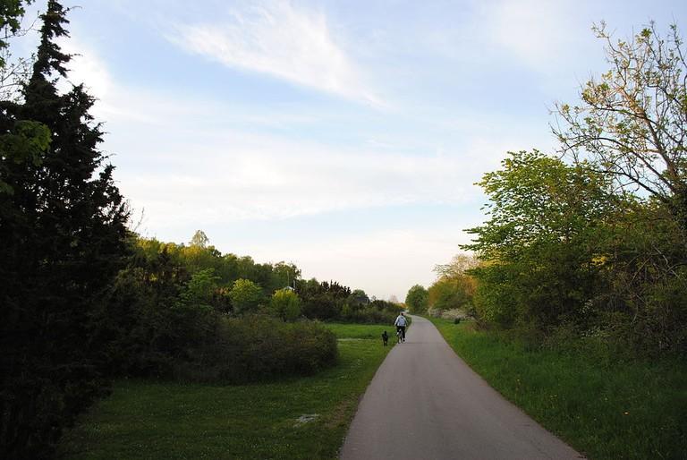 Biking on Öland