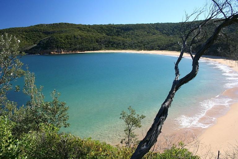 Maitland Bay | © Ray Hayward:Wikimedia Commons