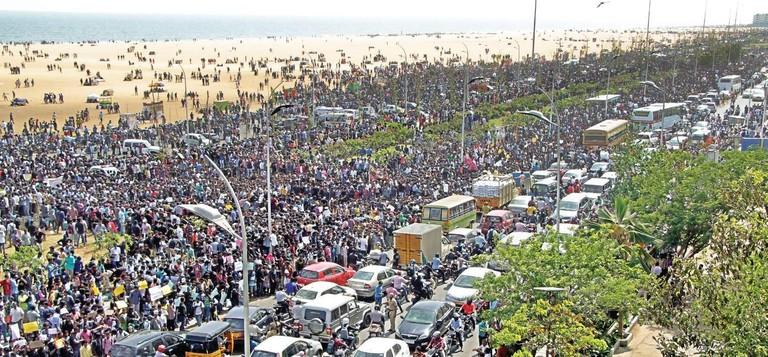 Marina Crowds