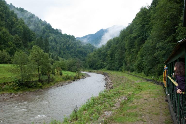 Mocănița on Vaser Valley