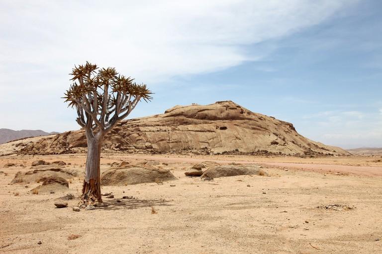 Namibia's haunting desert landscape