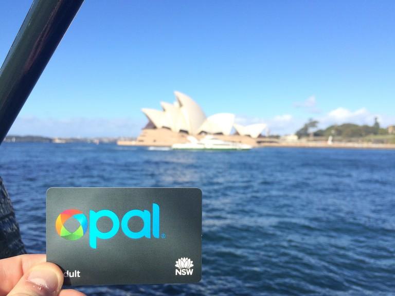 Opal card   © Beau Giles_Flickr