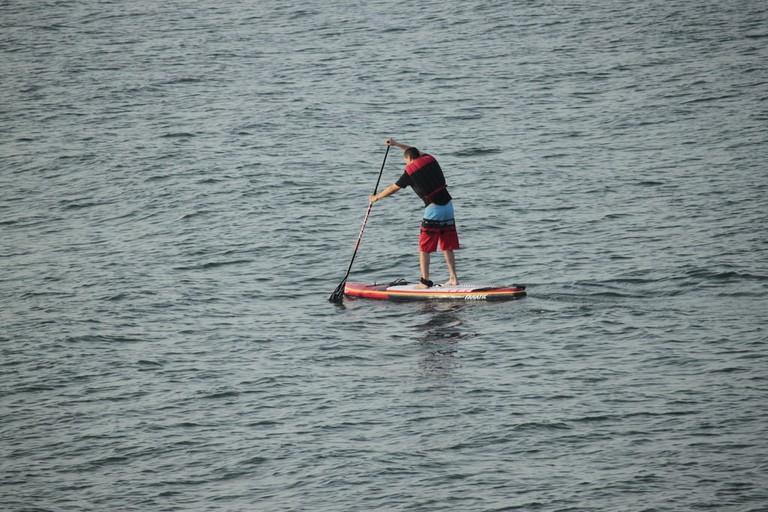 rsz_paddle