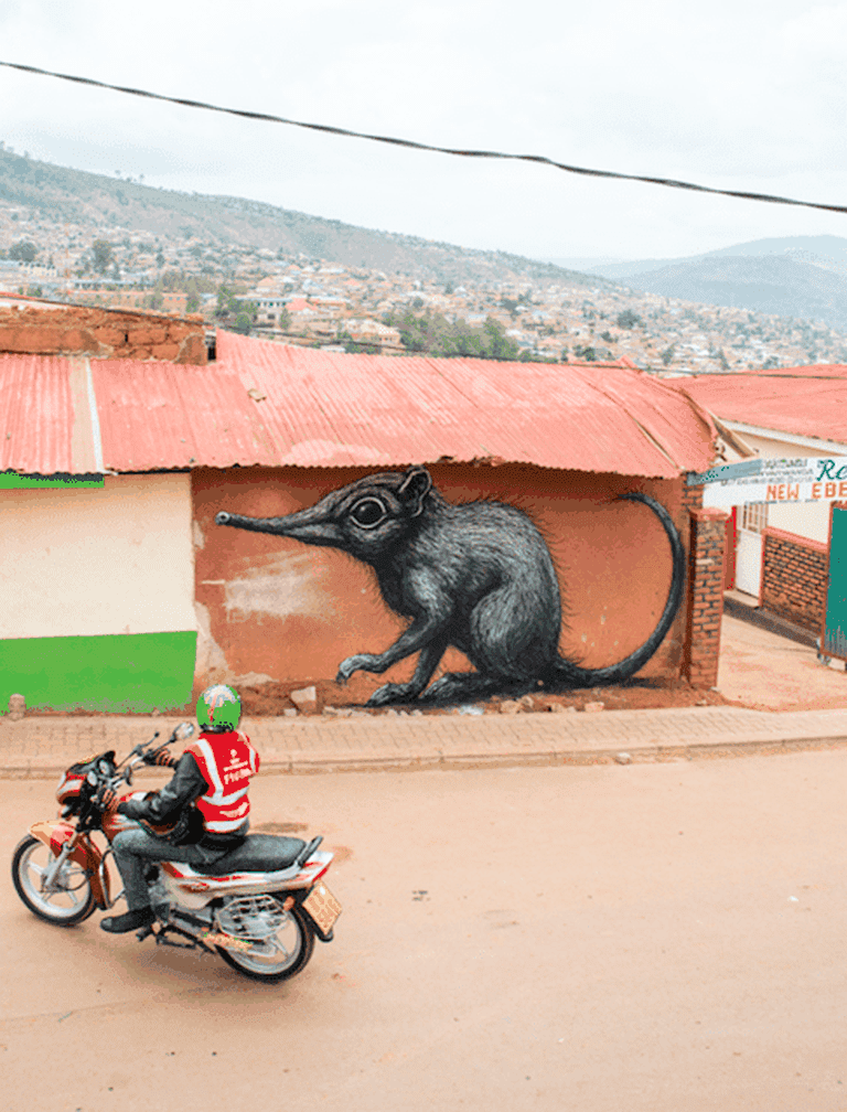 ROA's elephant shrew mural in Nyamirambo