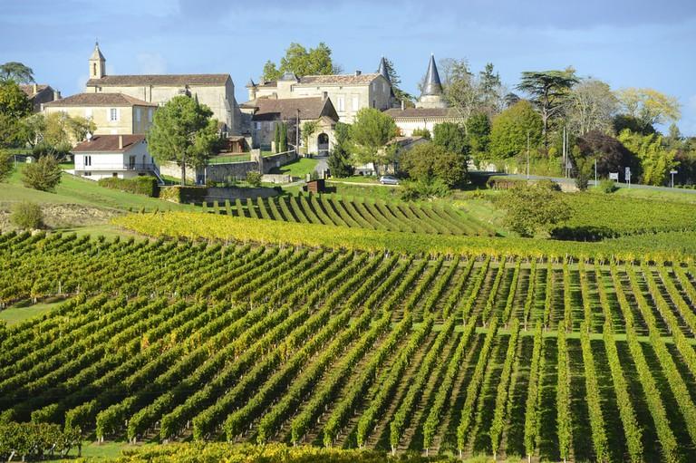 Vineyards of Saint Emilion, Bordeaux |© FreeProd33 / Shutterstock