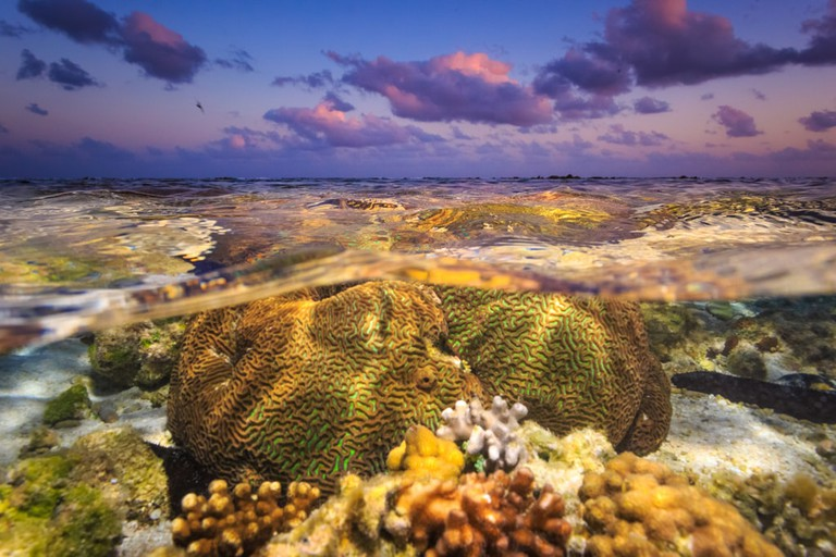 Great Barrier Reef at sunset, Australia