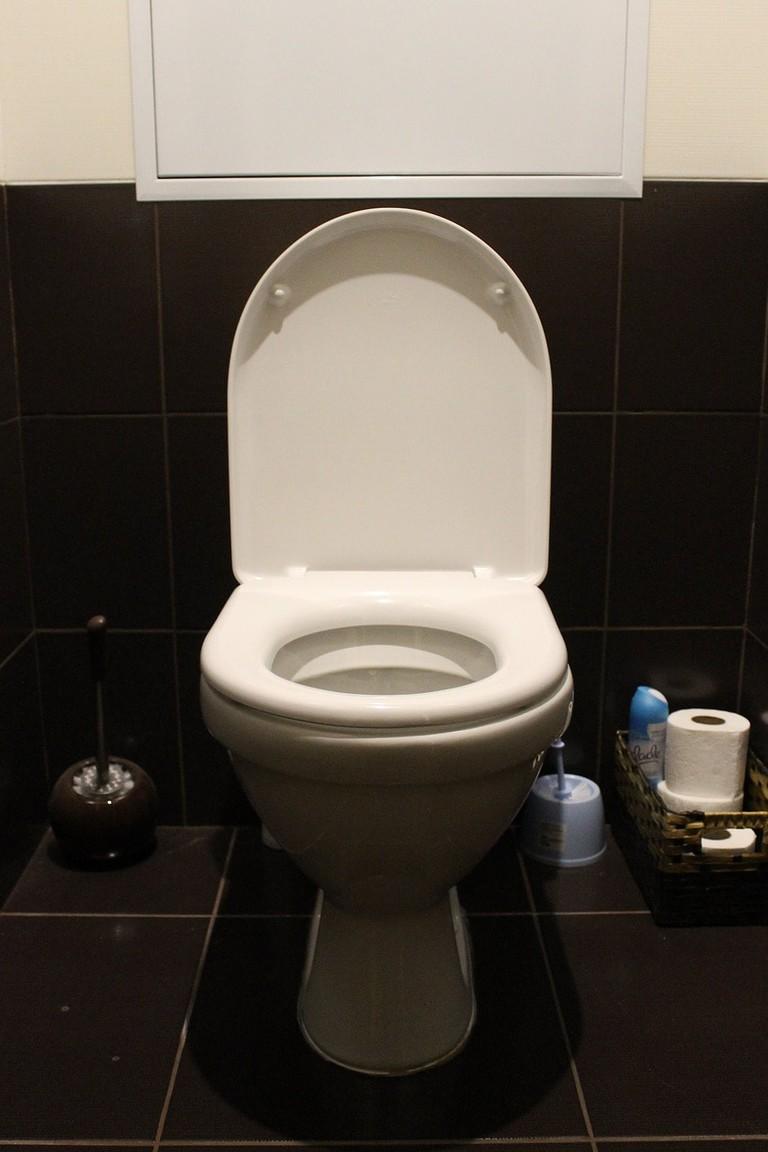 toilet-663707_1280