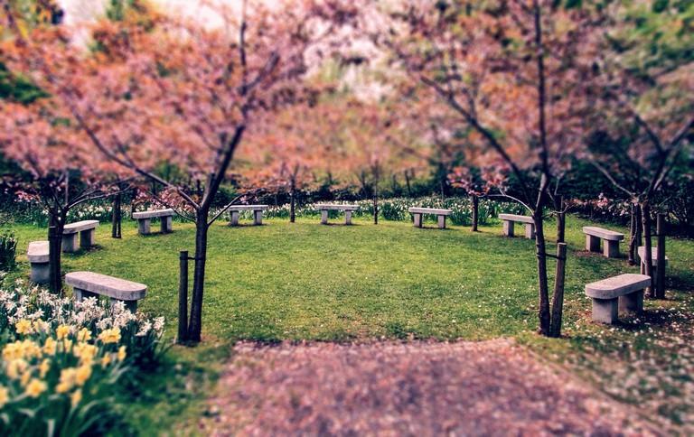 University of Durham Botanic Gardens | © Dominic Wade Flickr