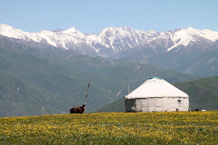 A yurt in Tekeli