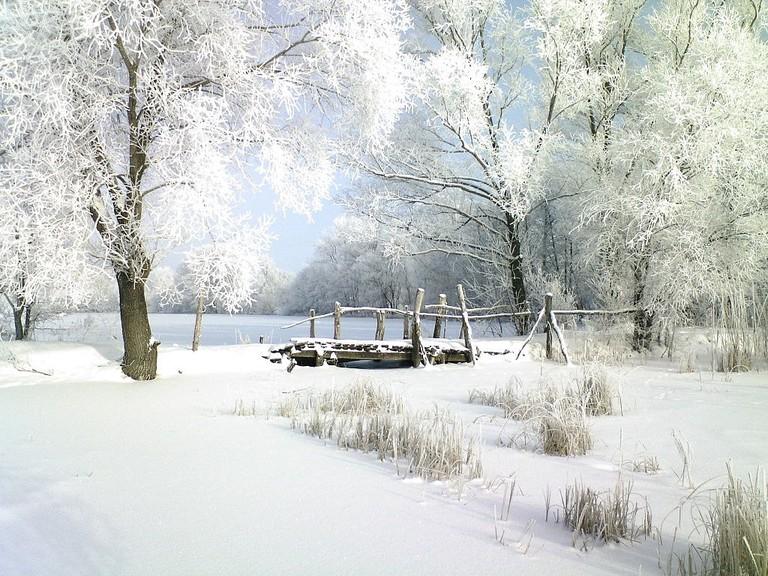 Poltava region