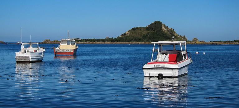 Fishing Boats in Island Bay, Wellington