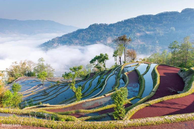 Sunrise color of rice terraces in Yuan Yang
