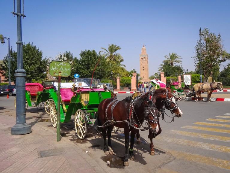 Marrakech horse-drawn carriage