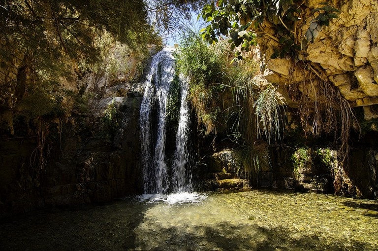 One of many waterfalls at the Ein Gedi Nature Reserve, Israel