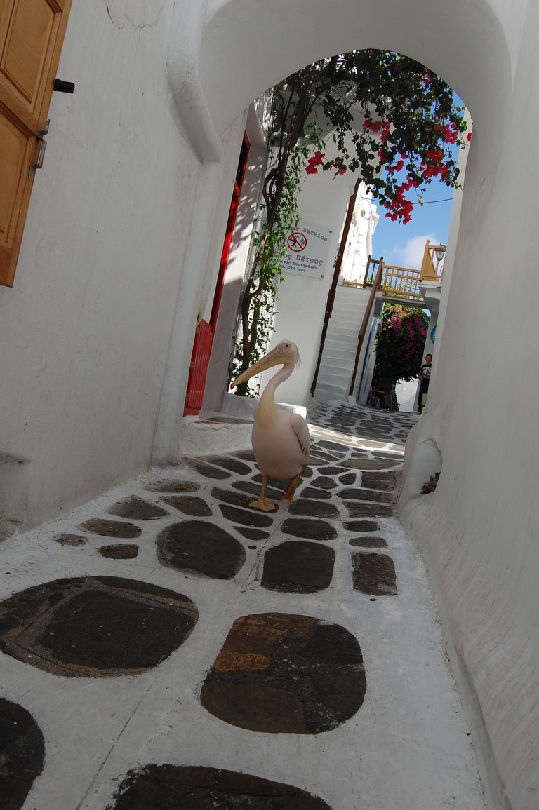 In the streets of Mykonos town