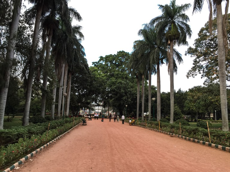 Lalbagh Botanical Garden's wide mud roads are better for running