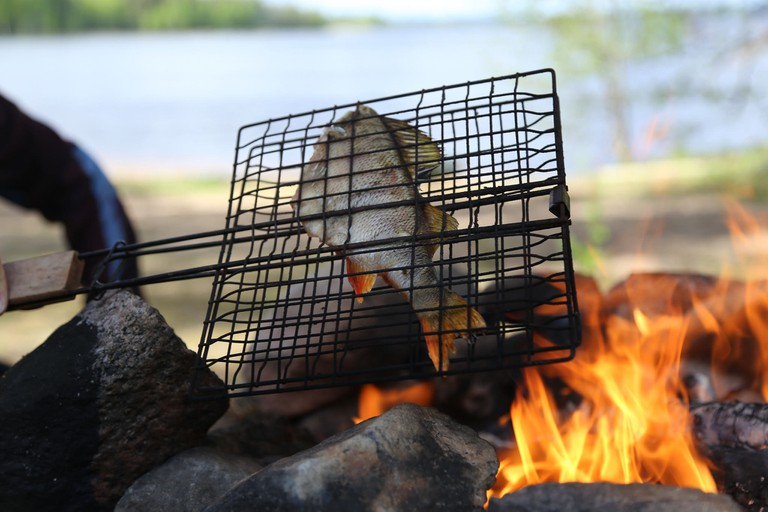 Cooking fish on a camp fire