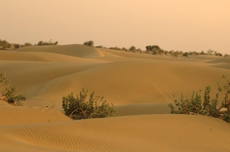 Thar Desert in Pakistan