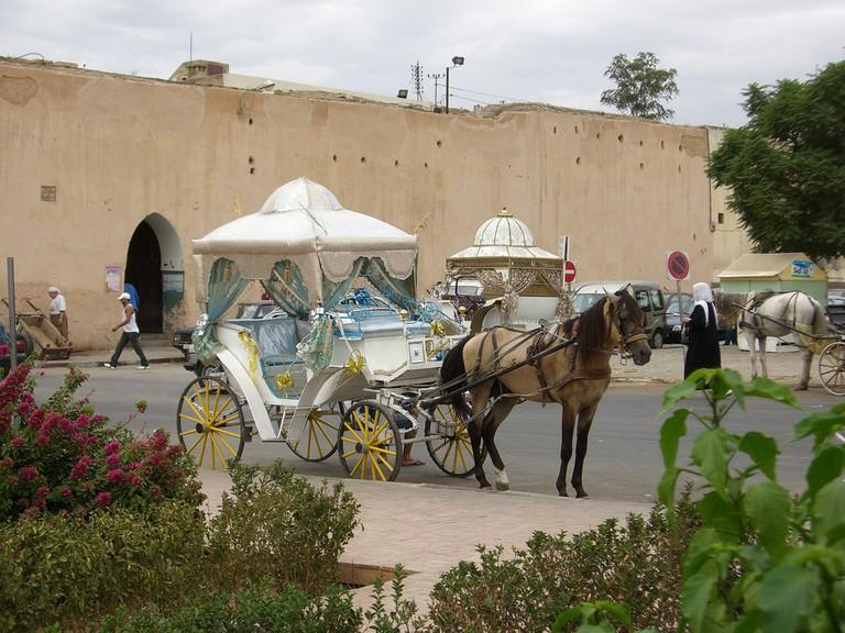 Calleche in Meknes, Morocco