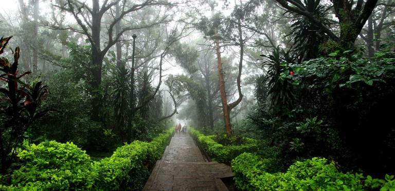 Nandi Hills is a popular hill station in Bangalore