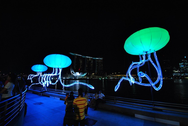 Colourful squid installations