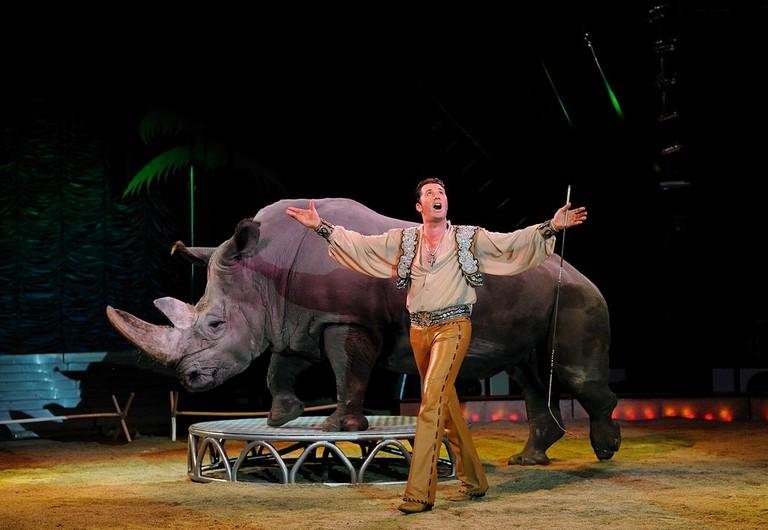 Circus rhino