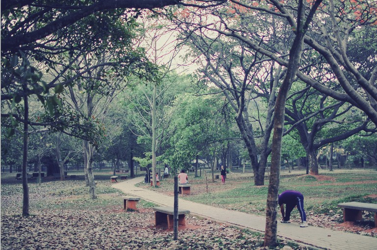 Cubbon Park is usually livened with activities in the morning