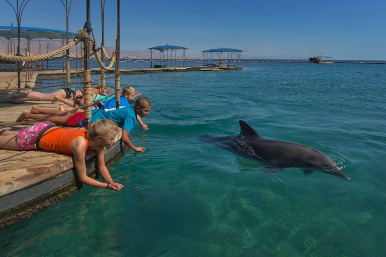 The Dolphin Reef in Eilat, Israel