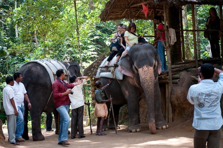 8.elephant_ride_