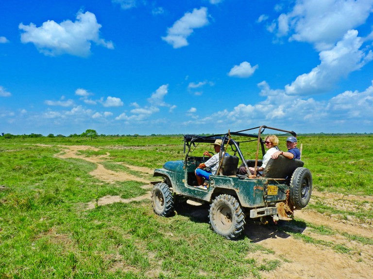 On safari in the Eastern Plains