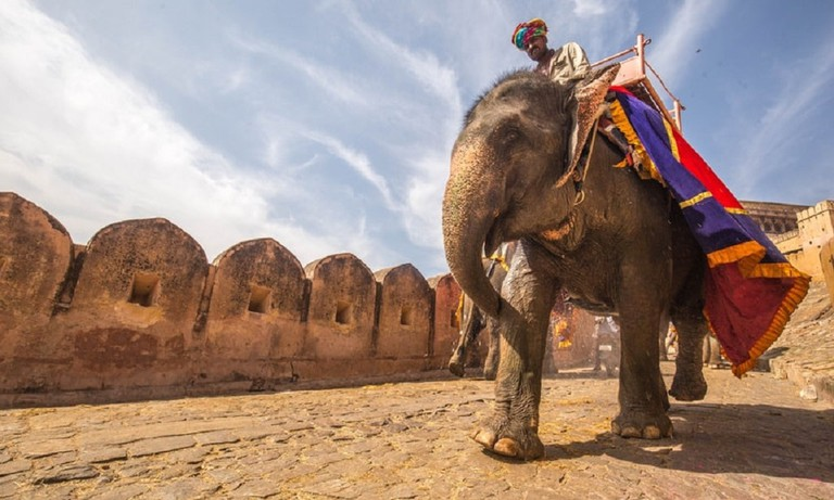 Elephant ride in Rajasthan