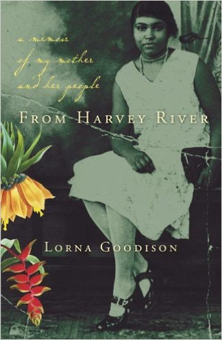 From Harvey River: A Memoir of My Mother and Her Island by Lorna Goodison