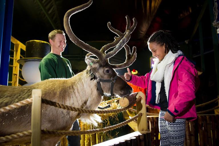 Reindeer Park, Birmingham   © Facebook