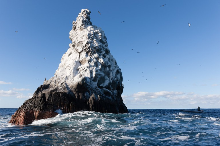 Roca Partida island in Revillagigedo archipelago, Mexico