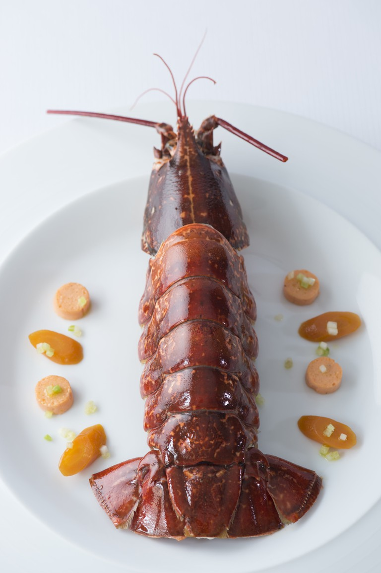 Surprise de homard 1 ©Laurence Mouton-min