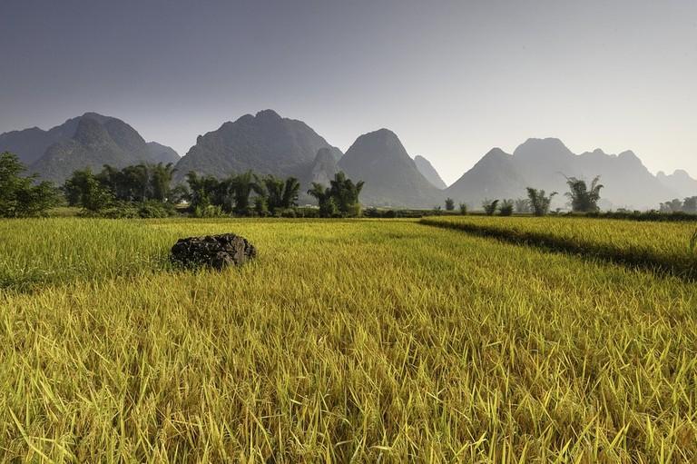 Vietnam's endless beauty | © Quangpraha/Pixabay