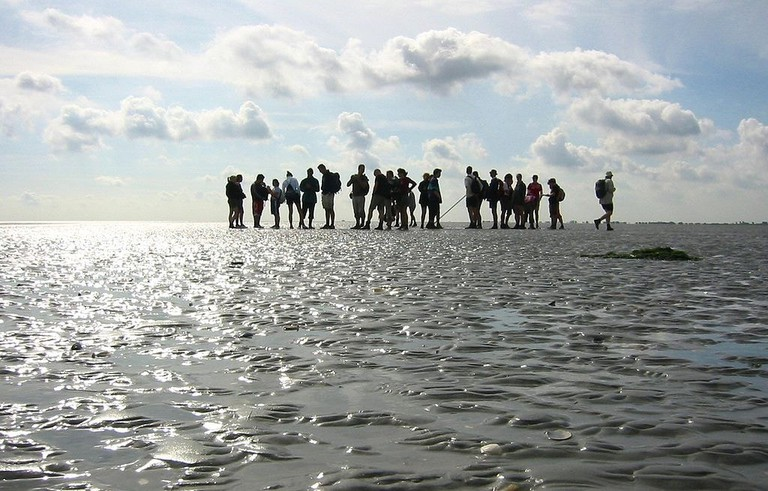 Mudflat hikers near Pieterburen, the Netherlands | © Michielvd / WikiCommons