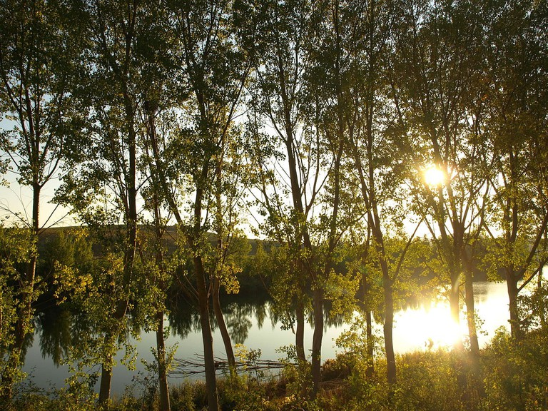 Rio Ebro near Haro, Spain