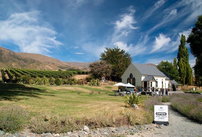 Waitiri Creek vineyard, Central Otago, New Zealand