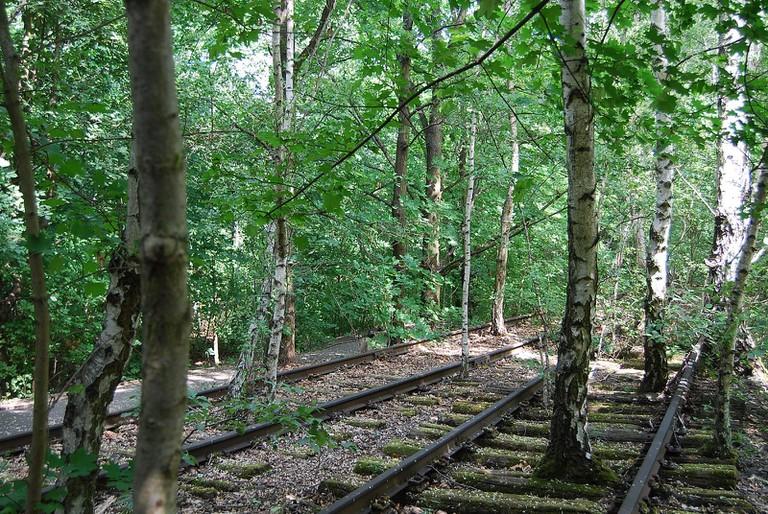 Hidden railway tracks in Schöneberg's natural oasis